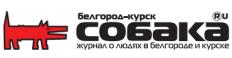 Белгород-курск Собака